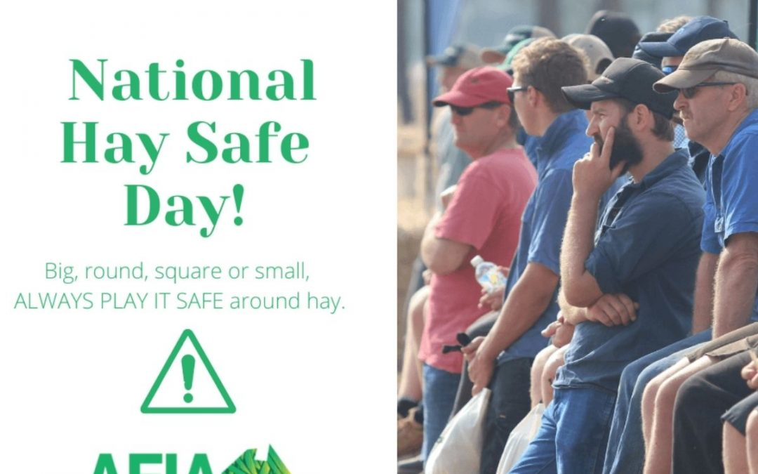 National Hay Safe Day